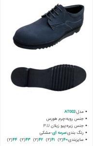 لیست محصولات عمده کفش